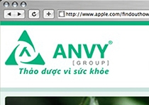 Anvy Group Official site